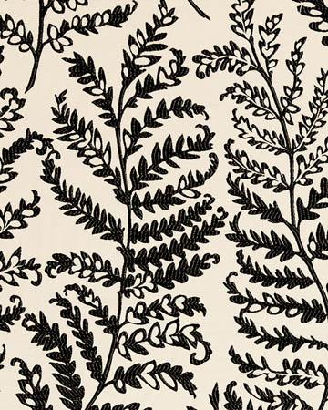 Clarke & Clarke Wild Fern Charcoal Curtains