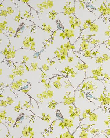 Studio G Birdies Citrus Curtains