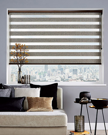 Vision Venice Silver Roller Blinds