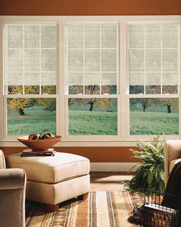 Puriti Cashmere Roller Blinds